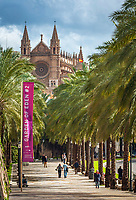 Spanien, Mallorca, Palma de Mallorca: von Palmen gesaeumt, der Passeig de Sagrera vor der Kathedrale La Seu | Spain, Mallorca, Palma de Mallorca: Passeig de Sagrera lined with palmtrees and Cathedral La Seu