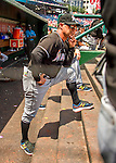 14 May 2016: Miami Marlins Manager Don Mattingly watches play from the steps of the dugout during the first game of a double-header against the Washington Nationals at Nationals Park in Washington, DC. The Nationals defeated the Marlins 6-4 in the afternoon matchup.  Mandatory Credit: Ed Wolfstein Photo *** RAW (NEF) Image File Available ***