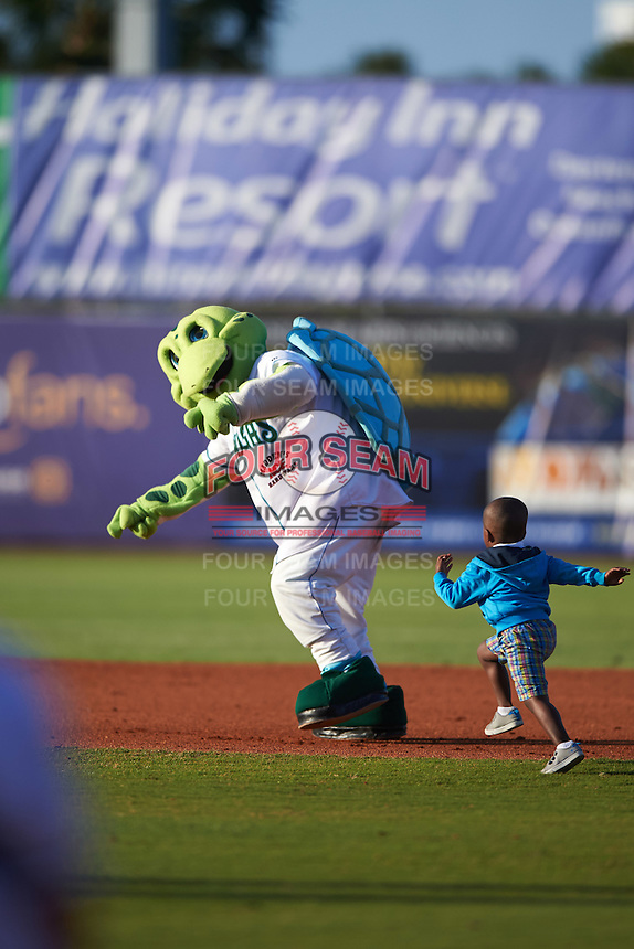 Daytona Tortugas mascot Shelldon with a young fan for an on field promotion during a game against the Fort Myers Miracle on April 17, 2016 at Jackie Robinson Ballpark in Daytona, Florida.  Fort Myers defeated Daytona 9-0.  (Mike Janes/Four Seam Images)