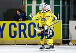 Stockholm 2014-12-19 Bandy Elitserien Hammarby IF - Broberg S&ouml;derhamn :  <br /> Broberg S&ouml;derhamns Jonas Engstr&ouml;m firar sitt 3-3 m&aring;l Robert Dammbro under matchen mellan Hammarby IF och Broberg S&ouml;derhamn <br /> (Foto: Kenta J&ouml;nsson) Nyckelord:  Elitserien Bandy Zinkensdamms IP Zinkensdamm Zinken Hammarby Bajen HIF Broberg S&ouml;derhamn jubel gl&auml;dje lycka glad happy