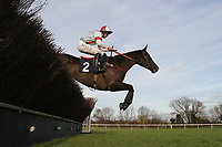 Gorgehous Lliege ridden by Liam Treadwell in jumping action during the Tom Jones Memorial HTJ Centre Ltd Beginners Chase