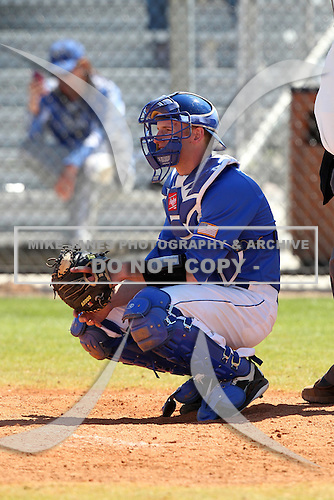 Air Force Falcons Alex Bast #20 during a game vs the Bradley Braves at Chain of Lakes Park in Winter Haven, Florida;  March 12, 2011.  Bradley defeated Air Force 6-0.  Photo By Mike Janes/Four Seam Images