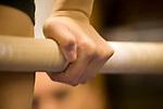 Chapin '08 - 4/4/08 - B Team Gym