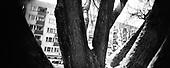Warsaw 2010 Poland. The Warsaw Ghetto was established for the Jewish population of Warsaw by Germans during their II Word War occupation of Poland. It existed from  October 2,1940 until May 16, 1943. There are very few remnants left of the Ghetto. It covered today's city quarters of Muranow, Nowolipki, Mirow, Nowe Miasto and part of Center Warsaw. Zamenhofa street..photo Maciej Jeziorek/Napo Images.Warszawa 2010 Polska. Getto warszawskie za?ozone dla ludno?ci zydowskiej przez okupacyjne w?adze niemieckie istnialo na terenie Warszawy od 2 pa?dziernika 1940  do 16 maja 1943. Nie pozostaly po nim w zasadzie zadne fizyczne slady. Dzis to tereny  m.in. Muranowa, Nowolipek, Mirowa, Nowego Miasta i czesc scislego centrum Warszawy. Ulica Zamenhofa. fot. Maciej Jeziorek/Napo Images
