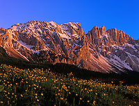 Italy, South Tyrol, Alto Adige, Dolomites, Alpenglow and Latemar Mountain Range (2.846 m)