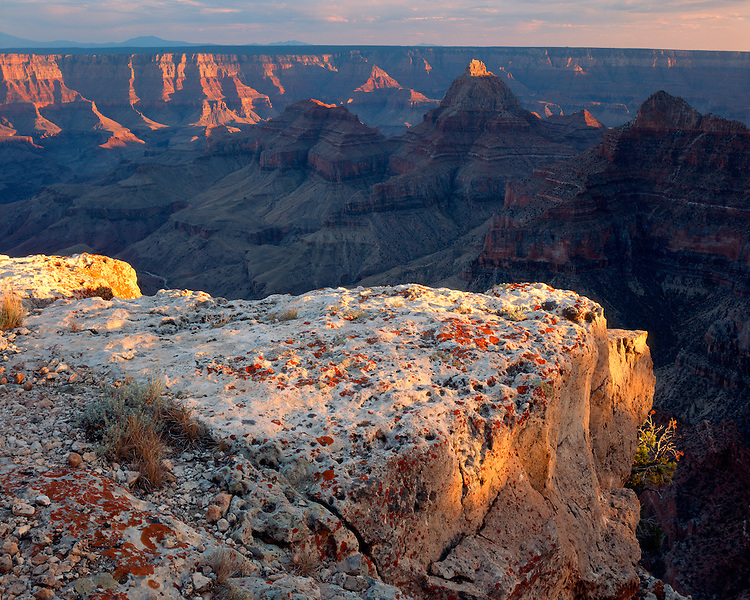 Sunrise light on the Grand Canyon viewed from Cape Royal on the North Rim; Grand Canyon National Park, AZ