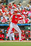 24 February 2019: St. Louis Cardinals fielder Drew Robinson at bat during a Spring Training game against the Washington Nationals at Roger Dean Stadium in Jupiter, Florida. The Cardinals fell to the Nationals 12-2 in Grapefruit League play. Mandatory Credit: Ed Wolfstein Photo *** RAW (NEF) Image File Available ***