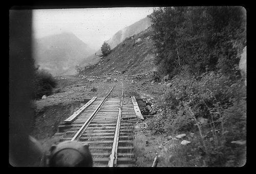 View through the windshield of an RGS Goose approaching a trestle with sheep on the track beyond. The background mountain partly obscured may be Windy Point.<br /> RGS  Ames (near), CO  <br /> RDS072-006 may be a companion photo.<br /> Thanks to Don Bergman for additional information.