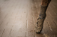 muddy post-finish ballet pauze<br /> #pointes<br /> <br /> elite men's race<br /> Krawatencross Lille 2017