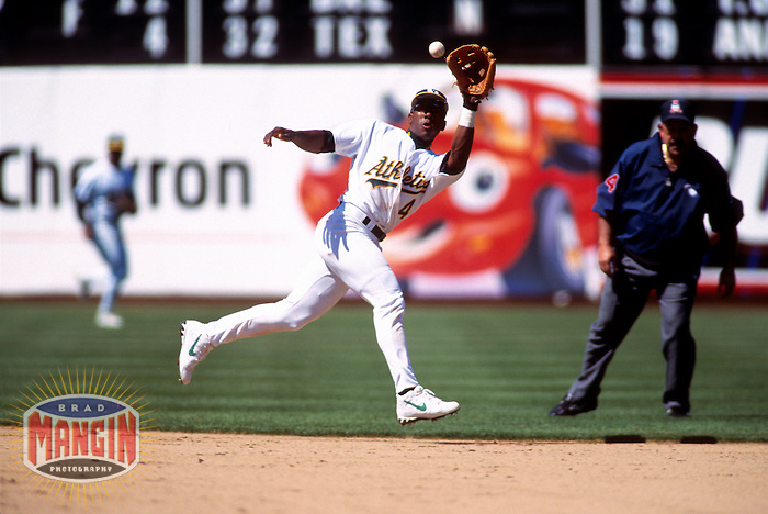 OAKLAND, CA:  Miguel Tejada of the Oakland Athletics in action during a game at the Oakland Coliseum in Oakland, California in 1999. (Photo by Brad Mangin)