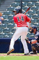 Sharlon Schoop #14 of the Richmond Flying Squirrels at bat against the Harrisburg Senators at The Diamond on July 22, 2011 in Richmond, Virginia.  The Squirrels defeated the Senators 5-1.   (Brian Westerholt / Four Seam Images)