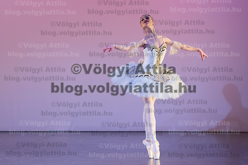 Milena Stoykova from Bulgaria performs her dance Female variation from Grand Pas de Deux of Paquita choreographed by Marius Petipa during the Rudolph Nureyev International Ballet Competition in Budapest, Hungary on March 20, 2013. ATTILA VOLGYI