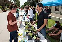 Diego Zapata '19<br /> Six student teams battle to win the Iron Chef competition as part of Earth Month on Thursday, April 11, 2019 in the JSC Quad. Event MC, Amos Himmelstein, provided play-by-play of the action. Their task was to create the best vegetarian or vegan starter and sauté dishes. A wide variety of fresh organic produce (some freshly picked at the FEAST garden), FEAST eggs, spices, oils AND one secret ingredient were at the team's disposal.<br /> Chef Brad Kent, owner of Olio GCM Wood Fired Pizzeria at Grand Central Market and co-Founder/chief culinary officer for Blaze Pizza, is this year's guest judge.<br /> The contest is led by FEAST and supported by Campus Dining, Facilities Management, RESF, and the Office of the President.<br /> (Photo by Marc Campos, Occidental College Photographer)