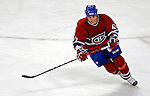 6 February 2007: Montreal Canadiens right wing forward Aaron Downey in action against the Carolina Hurricanes at the Bell Centre in Montreal, Canada. The Hurricanes went on to defeat the Canadiens 2-1.....Mandatory Photo Credit: Ed Wolfstein *** Editorial Sales through Icon Sports Media *** www.iconsportsmedia.com