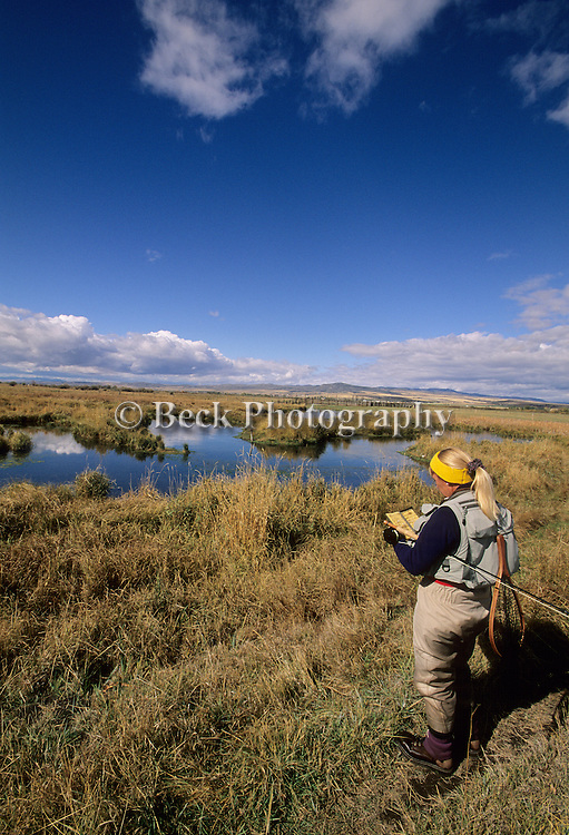 Fly fishing on the MZ Ranch, Belgrade, MT