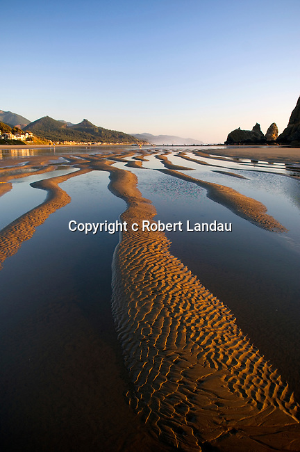 Tide pools at Cannon Beach, OR