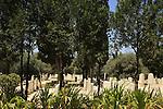 Israel, Mount Carmel, the cemetery in Zichron Ya'acov