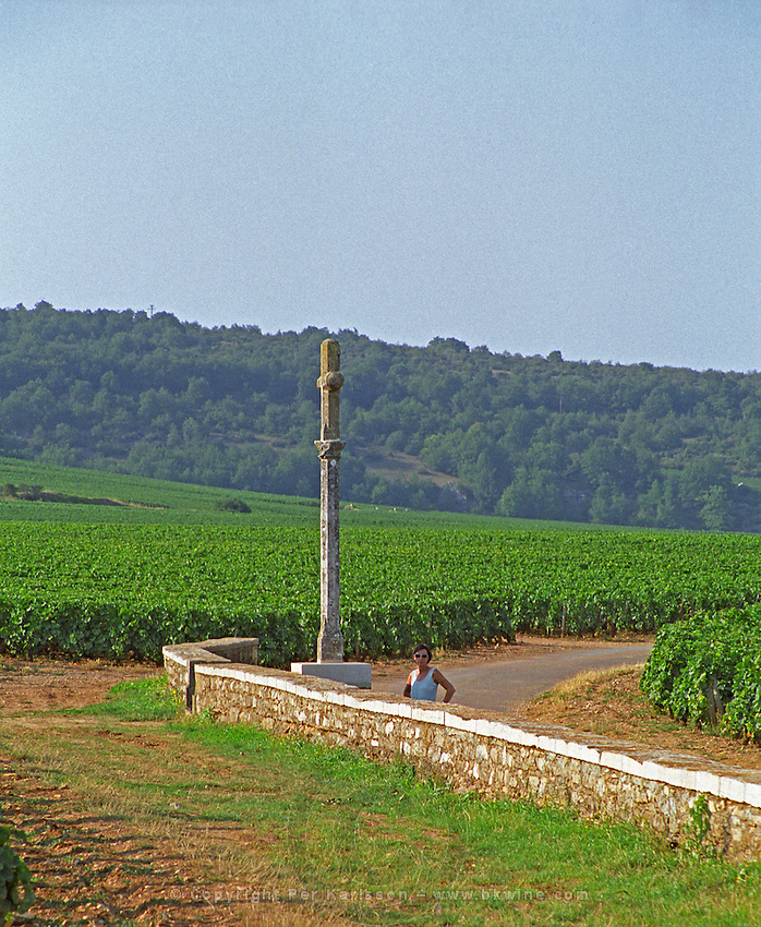 The stone cross at the Grand Cru vineyards Romanee Conti and Richebourg, a tourist benefiting from its shade a hot summer day
