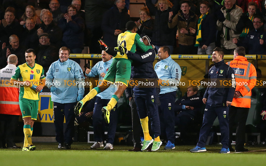 Leroy Fer scores the 3rd goal for Norwich and celebrates - Norwich City vs West Ham United, Barclays Premier League at Carrow Road, Norwich - 09/11/13 - MANDATORY CREDIT: Rob Newell/TGSPHOTO - Self billing applies where appropriate - 0845 094 6026 - contact@tgsphoto.co.uk - NO UNPAID USE