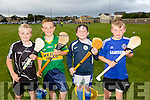 Cahill Concagh, Garry Lynch, Nathan Heffernan and Conor Kirby of  Tralee Parnells Hurling Club at Caherslee on Tuesday night