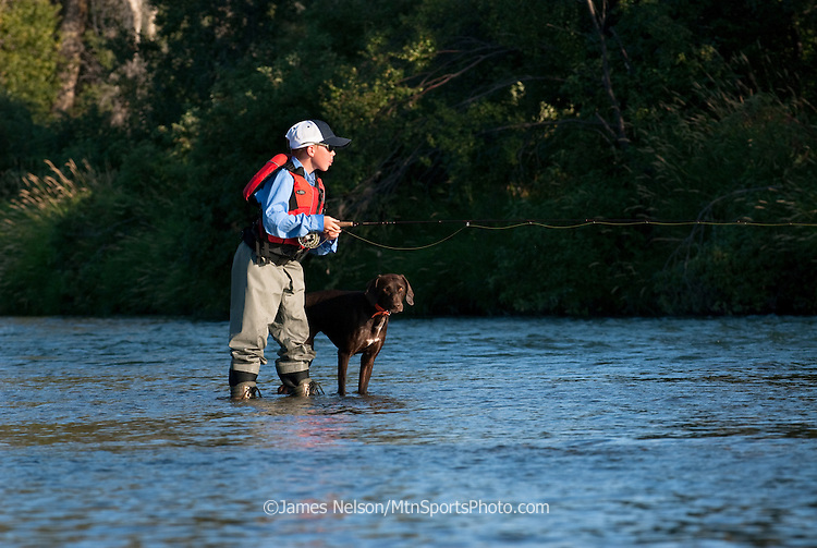 A nine-year old boy casts a fly with his father and a German short hair pointer on the South Fork of the Snake River, Idaho.