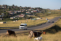 NDEVANA, SOUTH AFRICA MAY 6: A view of traffic on the main road on May 6, 2018 in Ndevana, a rural village in Eastern Cape Province in South Africa. Ndevana has about 40.000 residents but no proper facilities like a shop or hospital. The unemployment rate is huge (about 80-90%) in this forgotten rural area about 50 km from east London, South Africa. (Photo by: Per-Anders Pettersson/Getty Images)