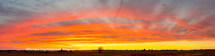 63893-04005 Sunset Marion Co. IL
