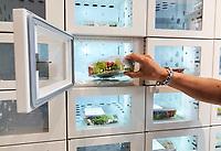 Nederland - Amsterdam -  September 2018.     Lunchroom de Health Food Wall in de Kinkerstraat. Het assortiment bestaat uit vegetarische en veganistische gerechten, zoveel mogelijk gemaakt met biologische producten. In de zaak staat ook een gezonde snackmuur met gekoelde maaltijden, volgens de eigenaresse de eerste ter wereld.  Foto mag niet in negatieve context worden gepubliceerd.   Foto Berlinda van Dam / Hollandse Hoogte