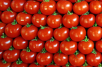 Fresh tomatoes polished and carefully displayed at the Aegean seaside town.
