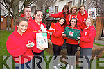 RED CROSS YOUTH: Members of the Red Cross Youth Group are inviting other youth to join with an information evening on Thursday March 8th in the Ballyroe Hotel at 7.30pm. Front l-r were: Katie O'Sullivan, Niamh Sheehan and David Heaslip. Middle l-r: Jacinta McCarthy, Nicole Patton, Michaela Heaslip. Back l-r were: Shauna Moriarty, Rachel Patton and Megan O'Sullivan,