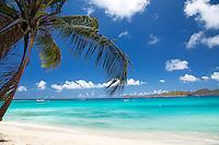 Cinnamon Bay Sunshine<br /> Virgin Islands National Park<br /> St. John<br /> U.S. Virgin Islands