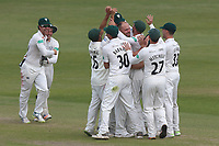 Joe Leach of Worcestershire celebrates taking the wicket of Ryan ten Doeschate during Worcestershire CCC vs Essex CCC, Specsavers County Championship Division 1 Cricket at New Road on 13th May 2018