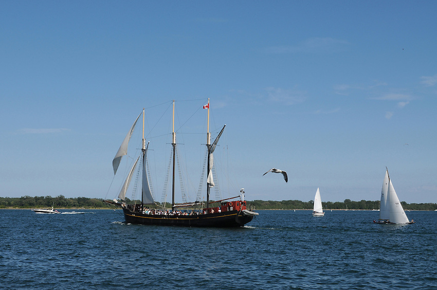 """Sail boats and the restored triple masted schooner """"Kajama"""" out on a pleasure cruise in Toronto harbor"""