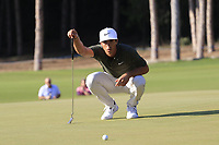 Thorbjorn Olesen (DEN) on the 16th green during Sunday's Final Round of the 2018 Turkish Airlines Open hosted by Regnum Carya Golf &amp; Spa Resort, Antalya, Turkey. 4th November 2018.<br /> Picture: Eoin Clarke | Golffile<br /> <br /> <br /> All photos usage must carry mandatory copyright credit (&copy; Golffile | Eoin Clarke)