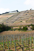 The Hermitage vineyards on the hill behind the city Tain-l'Hermitage, on the steep sloping hill, stone terraced. Sometimes spelled Ermitage. The Maison Blanche, White House on top of the hill and a sign with Paul Jaboulet Aine. To the left the Chante Alouette and Meal vineyards, to the right La Maison Blanche and Beaune Tain l'Hermitage, Drome, Drôme, France, Europe