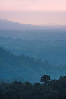 Misty Choco Cloud Forest at sunset, Ecuador