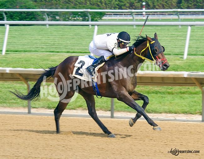 Big Zapple winning at Delaware Park on 5/30/15