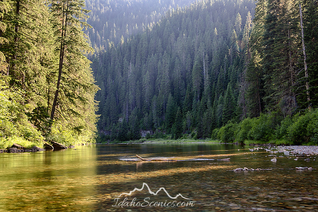 "Idaho, North, Kingston, Prichard. The North Fork of the Coeur d""Alene River in evening light of late spring."