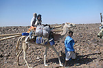 Famille nomade traversant l'Amatlich. Mauritanie. AfriqueNomad family riding across the Amatlich. Mauritania. Africa
