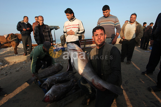 Palestinian fishermen display fish for sale, in Gaza seaport, on April 4, 2016. Israel on Sunday extended the distance it permits Gaza fishermen to head out to sea along certain parts of the coastline of the enclave, which is run by the Islamist group Hamas. The fishing zone was expanded from six nautical miles (11 km) to nine (16 km) along Gaza's central and southern shores, a step that Israeli authorities said should result in a bigger catch in deeper waters, where fish are more abundant. Photo by Ashraf Amra