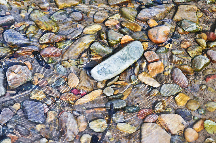 """""""RIVER ROCKS""""<br /> <br /> Colorful rocks beneath the crystal clear waters of the Tobacco River with reflecting ripples. 24 x 36 signed, original, gallery wrapped wrapped canvas $2,500. Check for availability"""