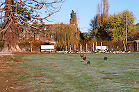 The farm house that is also the foie gras factory. Ferme de Biorne duck and fowl farm Dordogne France