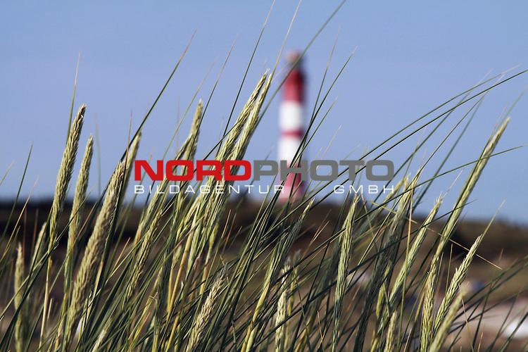 09.08.2013, Nordseeinsel Amrum, GER, im Bild Leuchtturm mit Duenengras, Foto © nph / Kohring *** Local Caption ***