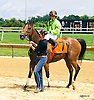 Racy winning at Delaware Park on 6/23/16