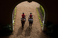 DEL MAR, CA - NOVEMBER 03: Riders head onto the track on Day 1 of the 2017 Breeders' Cup World Championships at Del Mar Thoroughbred Club on November 3, 2017 in Del Mar, California. (Photo by Casey Phillips/Eclipse Sportswire/Breeders Cup)