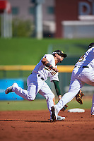 Mesa Solar Sox Franklin Barreto (4) and Yairo Munoz (5 - right), both of the Oakland Athletics organization, go for a ground ball during a game against the Scottsdale Scorpions on October 18, 2016 at Sloan Park in Mesa, Arizona.  Mesa defeated Scottsdale 6-3.  (Mike Janes/Four Seam Images)