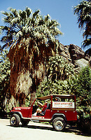 Jeep Tours in Andreas Canyon, Palm Springs, California