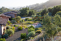 Sunny backyard patio with flagstone pavers with drought tolerant naturalistic plant design and meadow; Schaff Garden; Carpinteria California