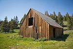 Historic Schneider cow camp barn, Alpine Co., Calif.