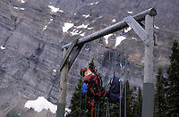 CANADA, ALBERTA, KANANASKIS, MAY 2002. A bear hang at Ribbon lake campsite between the snowy mountains.  The Kananaskis Country provincial park is home to Canada's most beautiful nature and wildlife. It has also escaped the mass tourism as in Banff National Park. Photo by Frits Meyst/Adventure4ever.com